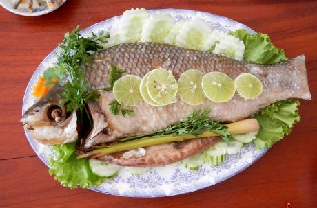 FISH EYE B