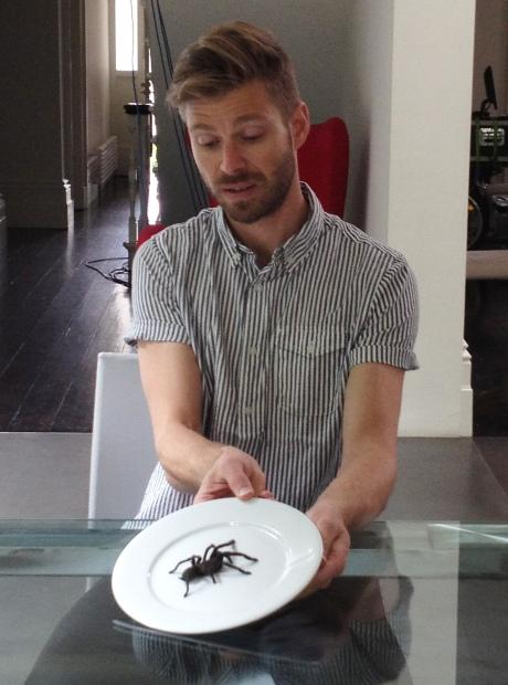 JONATHAN SPIDER