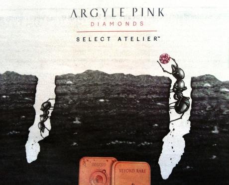ARGYLE ANTS 1
