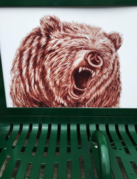 BEAR PIG B